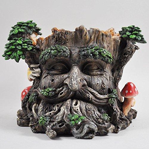 Fiesta Studios Pot de fleurs en forme de visage sculpté dans un tronc d'arbre - Pot de fleurs décoratif de jardin - Sculpture inspirée des Tréants - Hauteur 15cm