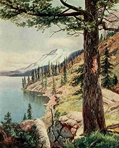 a4-photo-bagg-henry-h-1852-1928-on-sunset-highways-1921-on-the-shore-of-lake-tahoe-print-poster