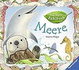 Meer (Mein Natur-Fühlbuch)