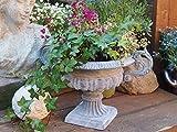 Amphore ,Blumentopf,Pflanzkübel,Topf,Vase,Blumenamphore,Garten,Französische Vase in grau,weiß oder braun