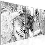 Bilder Löwen Liebe Wandbild 200 x 80 cm - 5 Teilig Vlies - Leinwand Bild XXL Format Wandbilder Wohnzimmer Wohnung Deko Kunstdrucke Grau -100% MADE IN GERMANY - Fertig zum Aufhängen 002155c