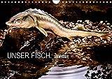 UNSER FISCH. SÜßWASSER. (Wandkalender 2019 DIN A4 quer): Detailgenaue Fischportraits, die...