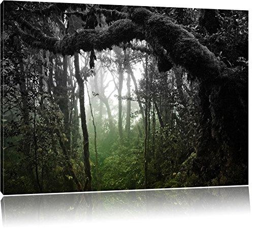 Pracht Gerahmt (Regenwald in seiner ganzen Pracht schwarz/weiß Format: 120x80 auf Leinwand, XXL riesige Bilder fertig gerahmt mit Keilrahmen, Kunstdruck auf Wandbild mit Rahmen, günstiger als Gemälde oder Ölbild, kein Poster oder Plakat)