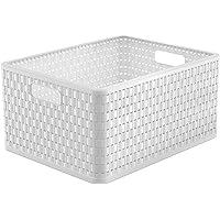 Rotho Country Boîte de Rangement 28L en Rotin, Plastique (PP) sans BPA, Blanc, A4+/28L (43,0 x 33,0 x 21,5 cm)