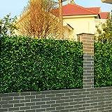 Uland Siepe di Bosso Artificiale, Decorazioni della pianta da parete, A009, Confezione da 6 pezzi, 50x50cm/pc