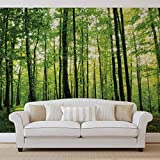 FORWALL Vlies Fototapete Tapete Vliestapete Grüner Wald AF186VEXXL (312cm x 219cm) Photo Wallpaper Mural