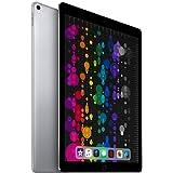 Apple iPad Pro 12.9 (2.ª Generación) 64GB 4G - Gris Espacial - Desbloqueado (Reacondicionado)