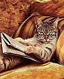 """Kit fai-da-te per pittura 5D con strass (""""diamond painting"""") - Ricamo su tela con strass, con gatto che legge il giornale, decorazione da parete"""