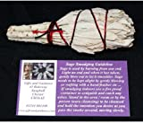 """Gifts and Guidance White Sage 4"""" Smudge Stick Cleansing Ritual Californian"""
