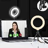 Video conferentieverlichtingsset, ringlicht voor laptop, selfieringlicht met clip, laptoplicht voor afstandswerk, onderwijs,