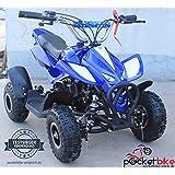 Nitro Quad 2016 Pocketbike Mini ATV 49 cc blau Pocket Bike NEU
