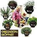 Bio Kräuter-Pflanzen 6er Set zum Grillen von LÀBiO! Kräuter bei Du und dein Garten