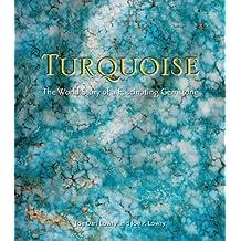 Turquoise (English Edition)