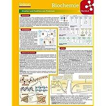 Lerntafel: Biochemie im Überblick (Lerntafeln Biologie)