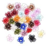 Organza Blumen Nähen Gewebes Band Appliques mit Kornen, Bunt, 30 Stücke