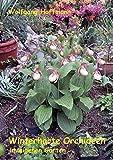 Winterharte Orchideen im eigenen Garten