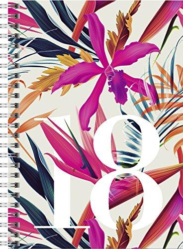 Produktbild rido/idé 702180701 Buchkalender Timing 1, 2 Seiten = 1 Woche, 148 x 210 mm, Grafik-Einband Aquarell, Kalendarium 2018