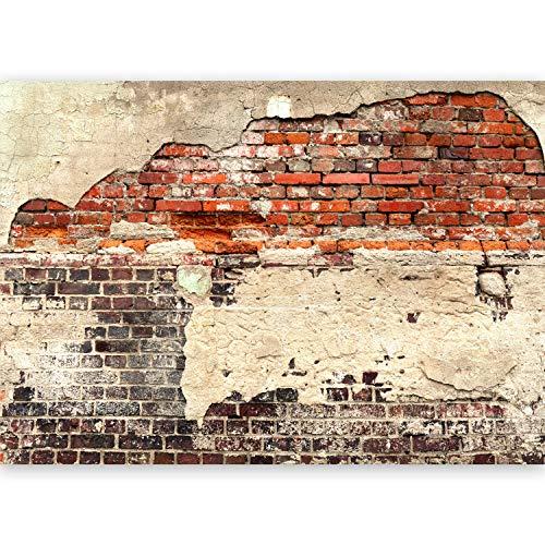 *murando – Vlies Fototapete 500×280 cm – Größe Format XXL- Vlies Tapete – Moderne Wanddeko – Design Tapete – Ziegel Ziegelstein f-A-0503-x-b*