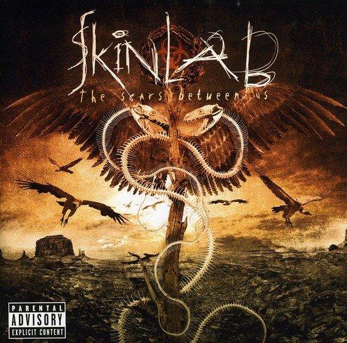 Skinlab: The Scars Between Us (Audio CD)