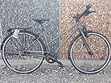 vsf fahrradmanufaktur T-700 11-G Shimano Alfine HS22 Trekking Bike 2018 (28