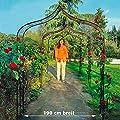 Rosenbogen Kingsbury Park, groß von Gärtner Pötschke auf Du und dein Garten