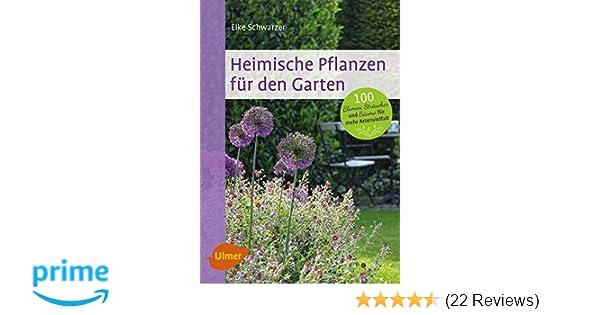 Garten Pflanzen Trockenen Regionen Tipps Sparen , Heimische Pflanzen Für Den Garten 100 Blumen Sträucher Und Bäume