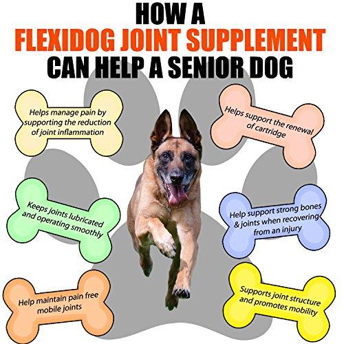 Gelenk Ergänzungsfutter für Hunde | Gegen Arthritisschmerzen, Hüftprobleme, Rheuma, Arthrose & Bewegungsprobleme | Gelenkschutz für Ihren Hund |120 Extra Starke & Kaubare Gelenketabletten - 4