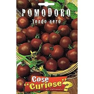 Vivai Le Georgiche Pomodoro Tondo Nero (Semente)