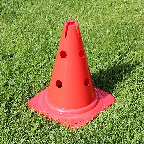 Bild von: Kombi-Kegel 30, 30 cm hoch, in 4 Farben, für Agility - Hundetraining (rot)