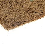 40*60 reptile lizards brown carpet mat pet supplies breathable non-toxic cage soft substrate 40*60 Reptile Lizards Brown Carpet Mat Pet Supplies Breathable Non-Toxic Cage Soft Substrate 61CX0M3niaL
