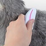 Pets Empire Flea Comb Pet Cat Dog Lice Comb Nit Remover Grooming Brush