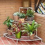 qzp Corner Flower Stand Schmiedeeisen Multi-Tierboden Balkon Balkon Wohnzimmer Leiter Pflanzer Eckregal,White