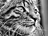 WOZUIBAN Puzzle 1000 Pièces Adultes Puzzle en Bois DIY Avatar De Chat Nerveux Gris-Blanc Puzzle en Bois Décoration Murale Domicile Art Cadeau du Festival 75x50cm...