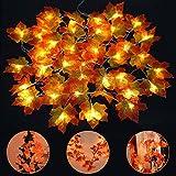 40 LED Ahornblätter Lichterkette, Vegena 4M Ahornblatt Lichterketten Weihnachtsbeleuchtung Batteriebetrieben Innen Außen Deko für Thanksgiving Halloween Weihnachten Balkon Terrasse Wohnzimmer Warmweiß