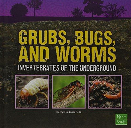 grubs-bugs-and-worms-invertebrates-of-the-underground-underground-safari-by-jody-sullivan-rake-2015-