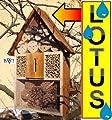 Insektenhaus dunkelbraun Teak Look mit Schmetterlingshaus braun Insektenhotel LOTUS + 2 x Sichtglas + Marienkäferhaus + Schmetterlingshaus, Insektenhotel LOTUS,mit Lotus-Effekt Oberflächen Beschichtung und 2 Sichtgläsern 8 und 11 mm Beobachtungsröhrch