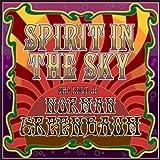 Songtexte von Norman Greenbaum - Spirit in the Sky
