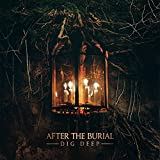 Songtexte von After the Burial - Dig Deep