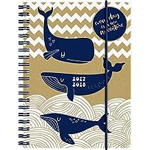 Brunnen 1072963138 Schülerkalender Wal (1 Woche in 2 Seiten, August 2017 bis Juli 2018)
