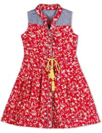 Budding Bees Red Printed Shirt Dress
