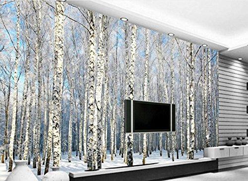 Yosot Einfache Traum Mode Tapete Birke Wald Schnee Landschaft Fernsehen Hintergrund 3D Tapete-200Cmx140Cm (Landschaft Fenster Birke)