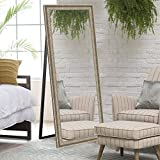 Elegant Arts & Frames Synthetic Antique Silver Decorative Cheval Mirror With Floor Stand
