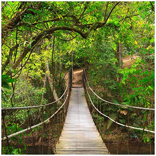 Wallario Acrylglasbild Hängebrücke im Urwald grüner Dschungel - 50 x 50 cm in Premium-Qualität: Brillante Farben, freischwebende Optik
