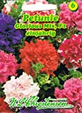 Petunie 'Glorious Mix' F1 , einjährig,Großblumig, gefüllt, 'Petunia grandiflora plena'
