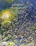 Eyes Over Africa: Afrika aus der Vogelperspektive, aufgenommen auf eine einmaliger Helicopterreise von Kairo bis Kapstadt (Deutsch, Englisch und Franz?sisch) 24,6 x 31,4 cm, 304 Seiten