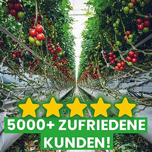 50x Gewächshausclips – Stabile Pflanzenhalter Aufhängevorrichtungen - 7