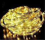 10m 240leds Iluminación Led Luces de Manguera Navidad, Cadena de Luces Tubo Led Decorativa IP44 Impermeable Transparente con 8 Modos para Interior/Exterior Salón Jardín Boda Fiesta-Blanco cálido