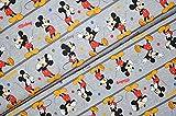 Swafing GmbH - Stoff - Disney Jersey Mickey Mouse Figuren -