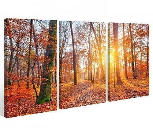 Lienzo 3 piezas Puesta de Sol Bosque árbol de otoño Sol Mural De Imágenes 9A398 Madera - completamente enmarcado - directa de Fabricante - 90x60cm (3unid. 30 x 60cm)
