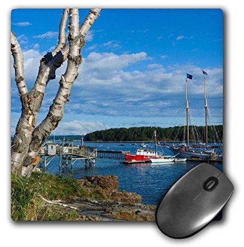 3drose Maine, MT. Desert Island, Bar Harbor, hoch Schiff, Franzose Bucht, Maus Pad, 20,3cm von 20,3cm (MP _ 230887_ 1)